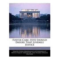 Foster Care: Hhs Should Ensure, United States Government