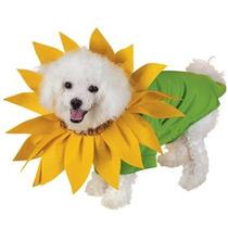Disfraz De Flor Girasol Para Perros, Mascotas, Envio Gratis