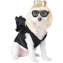 Disfraz De Lady Gaga Para Perros, Mascotas, Envio Gratis