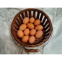 Docena Pollo De Madera De Imitación Falsa Huevos Anidación D