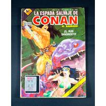 La Espada Salvaje De Conan El Bárbaro. No. 110 Año 1992 Vv4