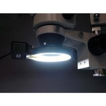 Tb Lampara P/ Microscopio Amscope Frl12-a 12w Microscope
