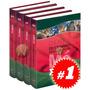 Demex Diccionario Enciclopédico De México 4 Vols + 1 Cd Rom