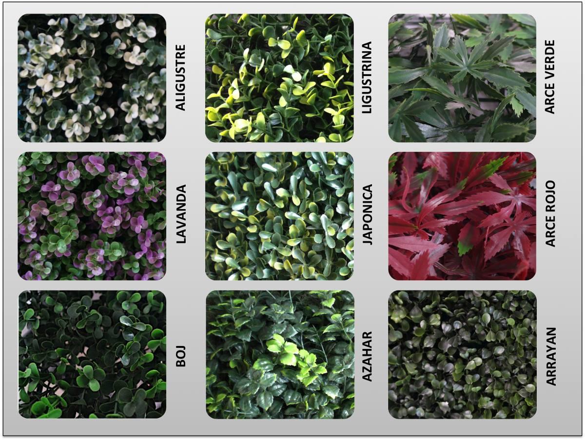 Como hacer un muro verde plantas al aire libre pared for Plantas muro verde
