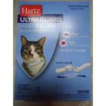 Collar Antipulgas Para Gatos
