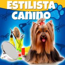 Estilista Canino Profesional Y Estetica Canina 2016 + Dvd