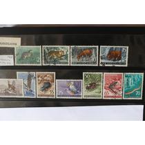Yugoslavia Set De 11 Estampillas De Fauna. Año 1954