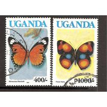 Uganda Mariposas Fauna