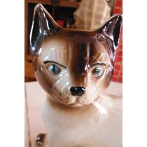 Figura Gato Felino Retro Brazil Decoracion Hogar Oficina Cat