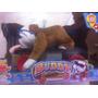 Bulldog Ingles Peluche Skate Rc Con Patineta Control Remoto