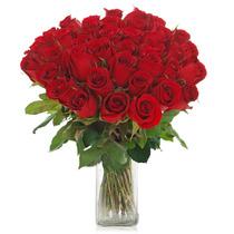 Ramo De 36 Rosas Flores A Domicilio Varios Colores Florero