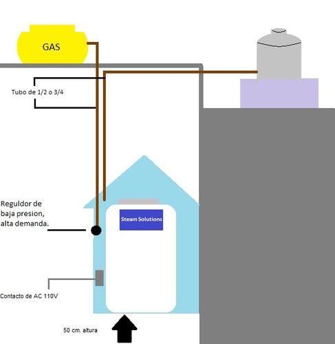 Generador De Vapor 15m3 Encendido Electronico