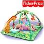Gimnasio Para Bebe Rainforest Deluxe Fisher Price Luces Melo