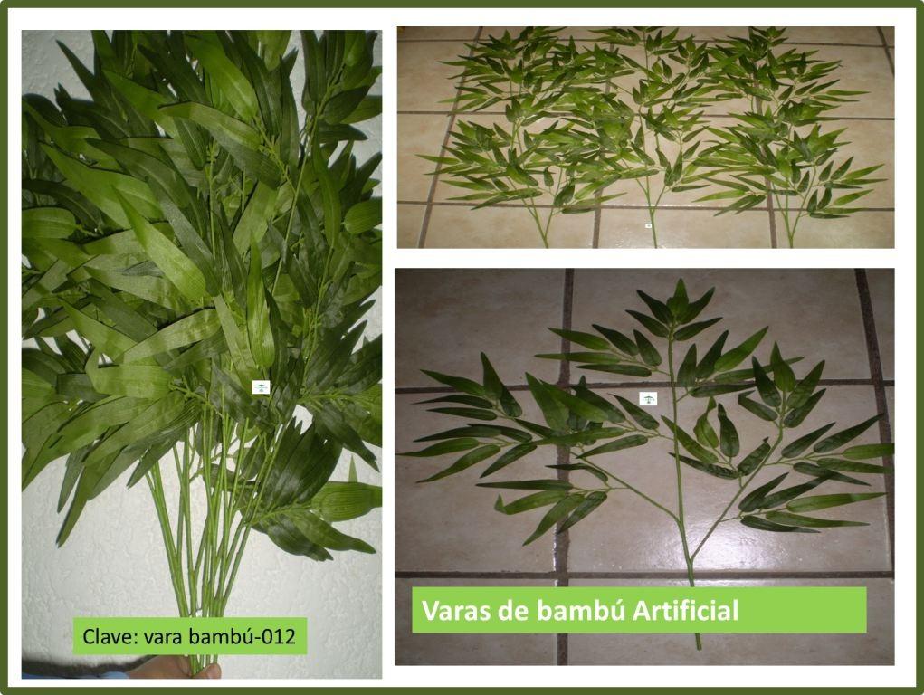 Hojas plantas bambu en mercadolibre - Bambu planta exterior ...