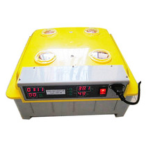 Incubadora Automatica De Huevos Capacidad 48 Huevos Vv4