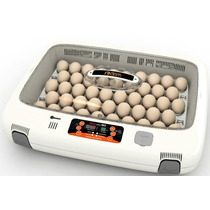 Incubadora Para Huevos Automatica R-com Rcom 50 Max Mn4