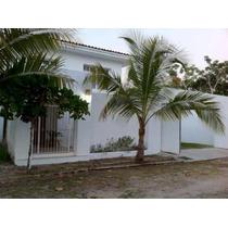 Casa En Renta C/alberca 3 Rec,jacuzzi A 250 Mts La Playa