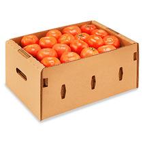 15 Cajas De Carton Para Tomates Carga 11 Kilos