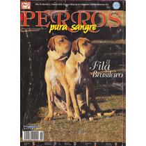 Revistas De Perros Fila Brasileiro Febrero 2002 Lista Enviar