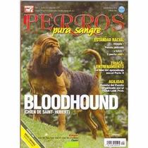 Revistas De Perros Pura Sangre El Bloodhound Diciembre 2011