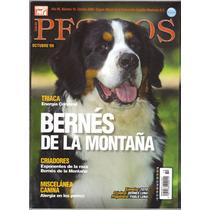 Revista Perros Pura Sangre Bernés De La Montaña Octubre 2009