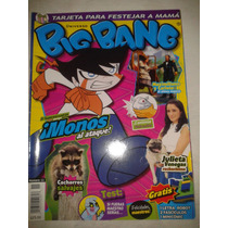 Revista Big Bang #11 Julieta Venegas Rockerisima Lbf