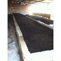 Humus Y Lixiviado De Lombriz Roja California Abono Organico.