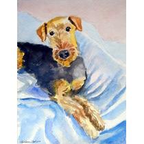 Acogedora Airedale Terrier Flag Canvas Tamaño 7335chf
