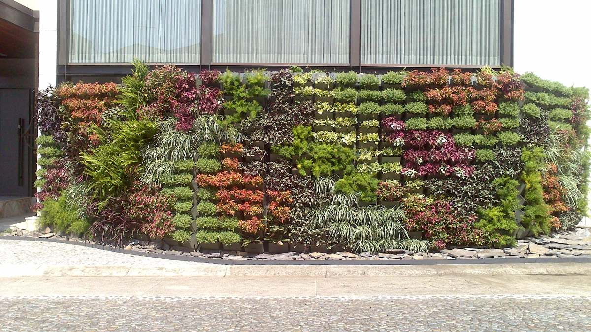 Jard n vertical muro verde huerto vertical fachada for Reja para jardin vertical