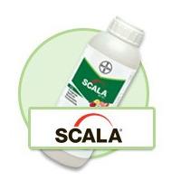 Scala 1lt Fungicida Agricola Control De Botrytis, Alternaria