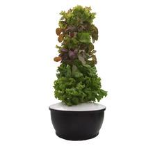 Torre Cultivarte 36 Plantas Sistema De Cultivo Hidroponia