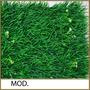 Muros Verdes, Follaje Estandar 60x40