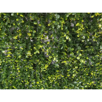 Follaje Artificial Muros Verdes