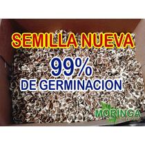 Moringaoleifera 1 Kg