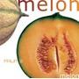 1 Lb De Semillas De Cucumis Melo - Melon 380-a