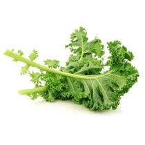 100 Semillas De Kale