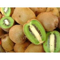35 Semillas Kiwi Fruta Actinidia Enredadera