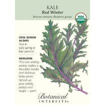 Red Winter Kale Certified Organic Herencia Semillas