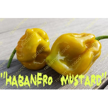 10 Semillas De Chile Habanero Mustard (mostaza)