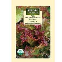 Semillas Del Cambio Orgánico Certificado Lechuga Redina - 70