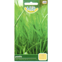 1 Sobre De Semilla De Pasto Para Terrenos Secos