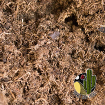 Peat Moss Musgo Cultivo, Hidroponia 4litros (mecadopago)