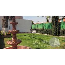 Hermoso Jardín Para Fiestas Y Eventos ¡muy Accesible! Maa