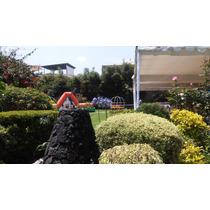 Exclusivo Jardín En Coyoacan Para Eventos Sociales