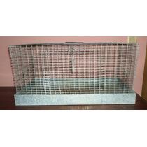 Jaula Transportadora Para Cuyo Y Hamster Mide 50x40x30 Usada