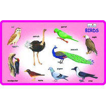 Early Years Juguete - Juego Creativo Y Aprender Birds Aprend