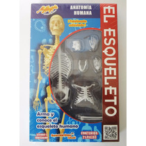 Esqueleto Mi Alegría Juguete Didáctico Para Armar.