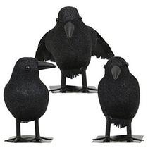 A Estrenar Lote De 9 De Halloween Negro Con Plumas De Gallo