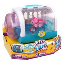 Poco Vivo Animales Lil Mouse House - Flor