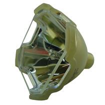 Sony Lmp-f300 / Lmpf300 Lámpara De Proyector Philips